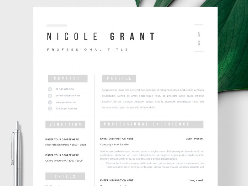 Template for your Bruges CV template ready to download the Word CV template