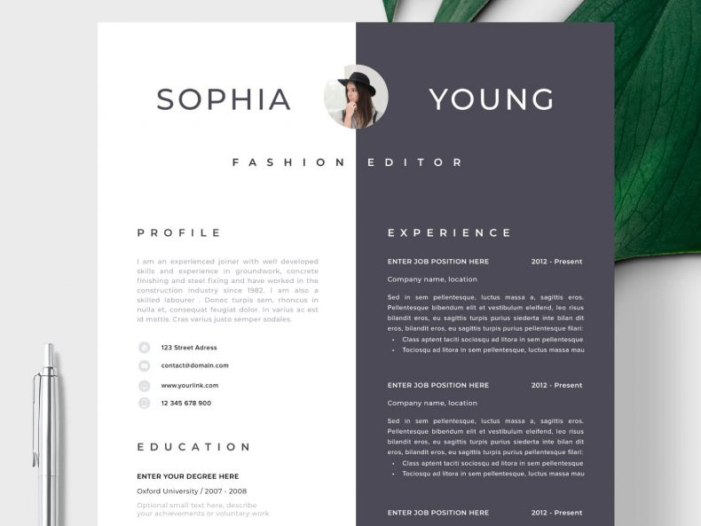 A stylish CV template Fifth Avenue ready to download the Word CV template