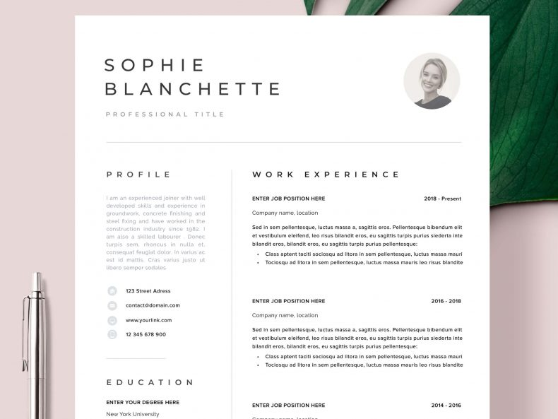 A modern Frankfurt resume template ready to download the Word resume template