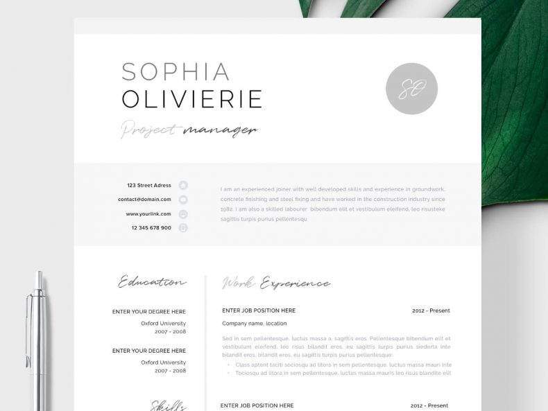 CV template Lyon ready to download the Word CV template