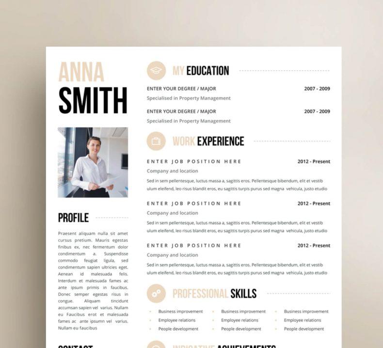 Modern resume template Chicago