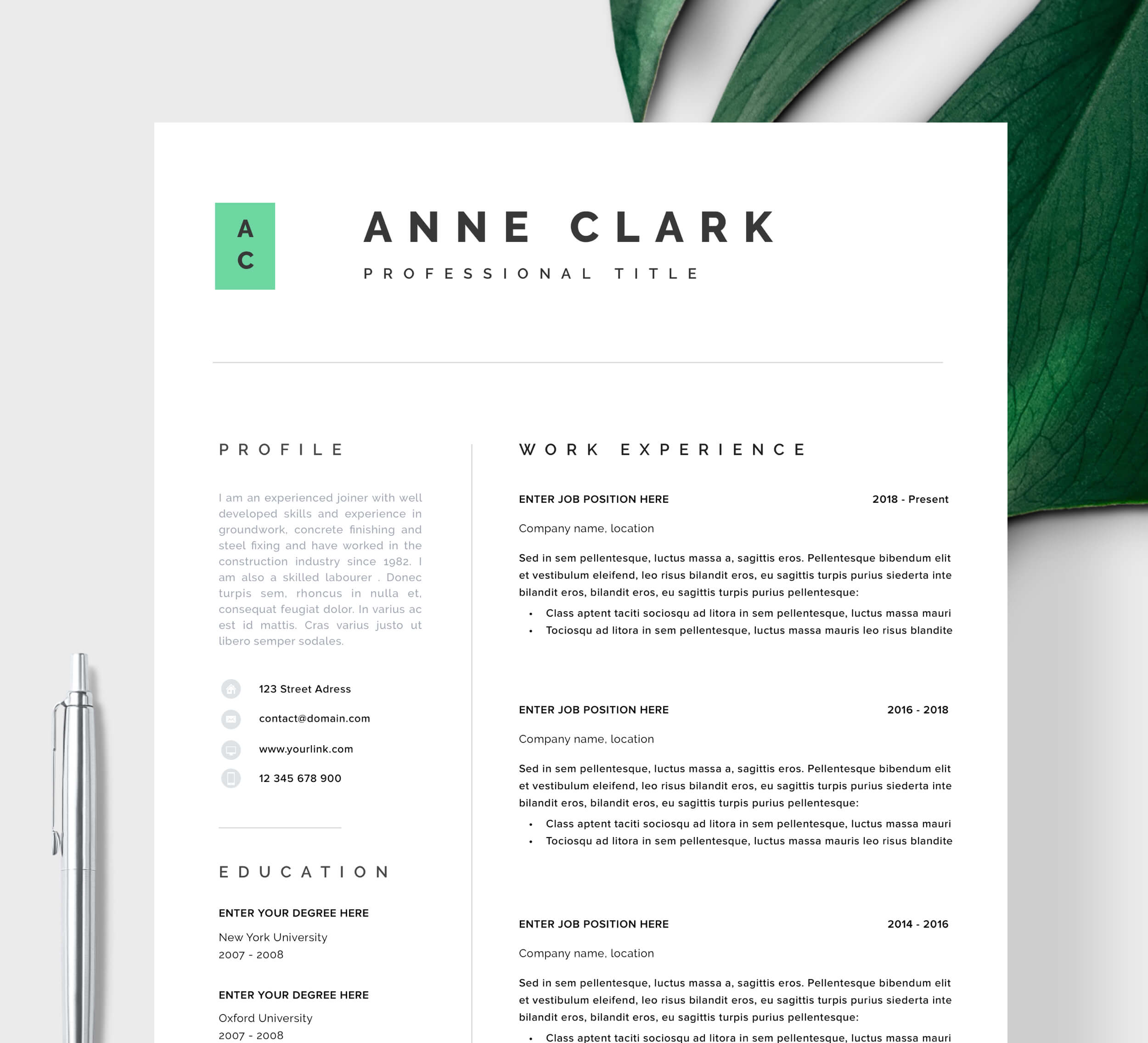 Architecture Resume Template from www.resumeangels.com