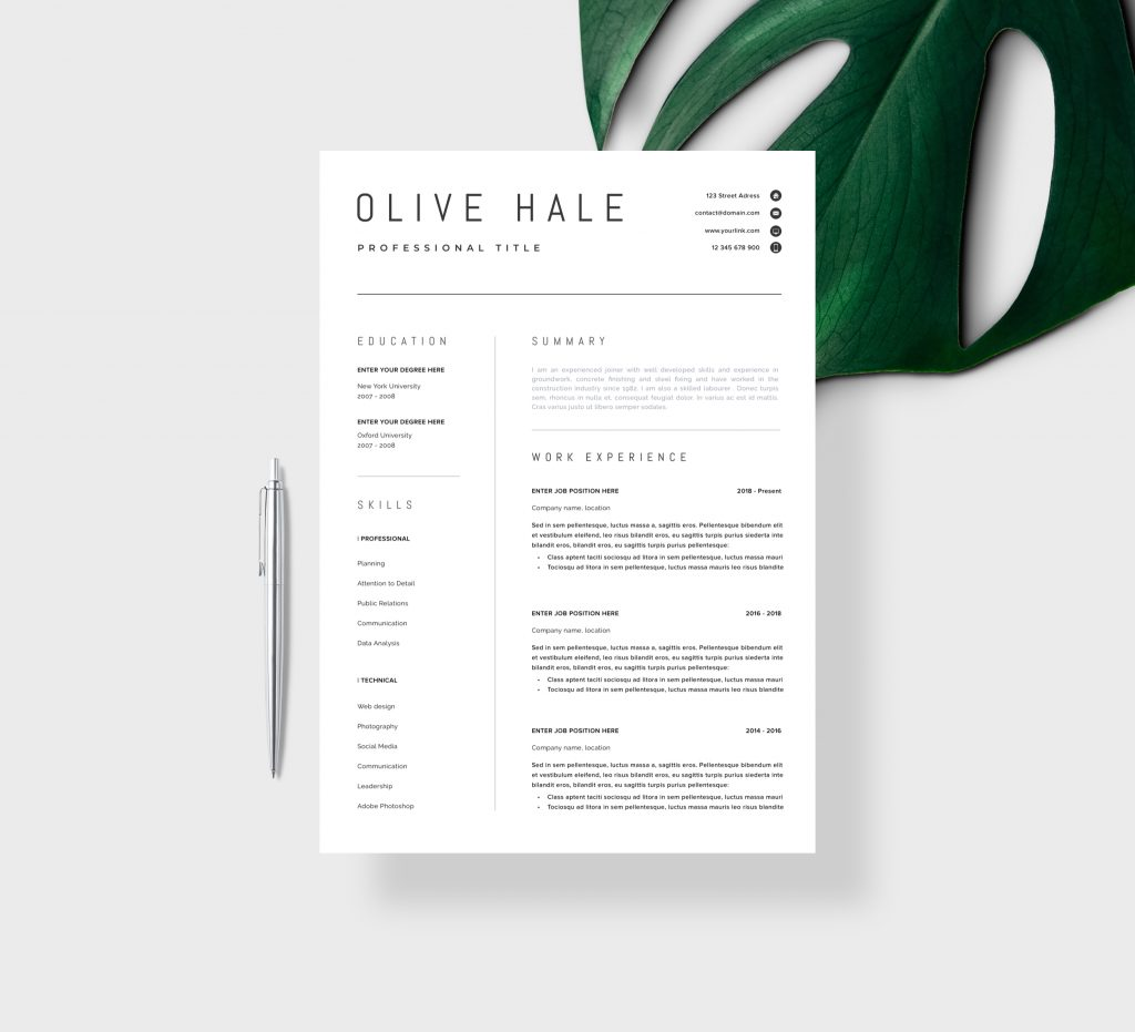 Architecture Resume In MS Word